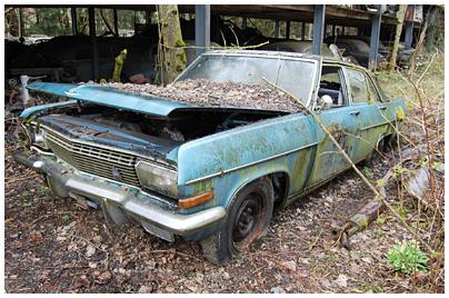 Opel Diplomat A Autofriedhof G 252 Rbetal 17 200001