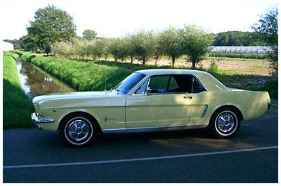 Ford, Mustang. Bild des Tages vom 26.08.2019